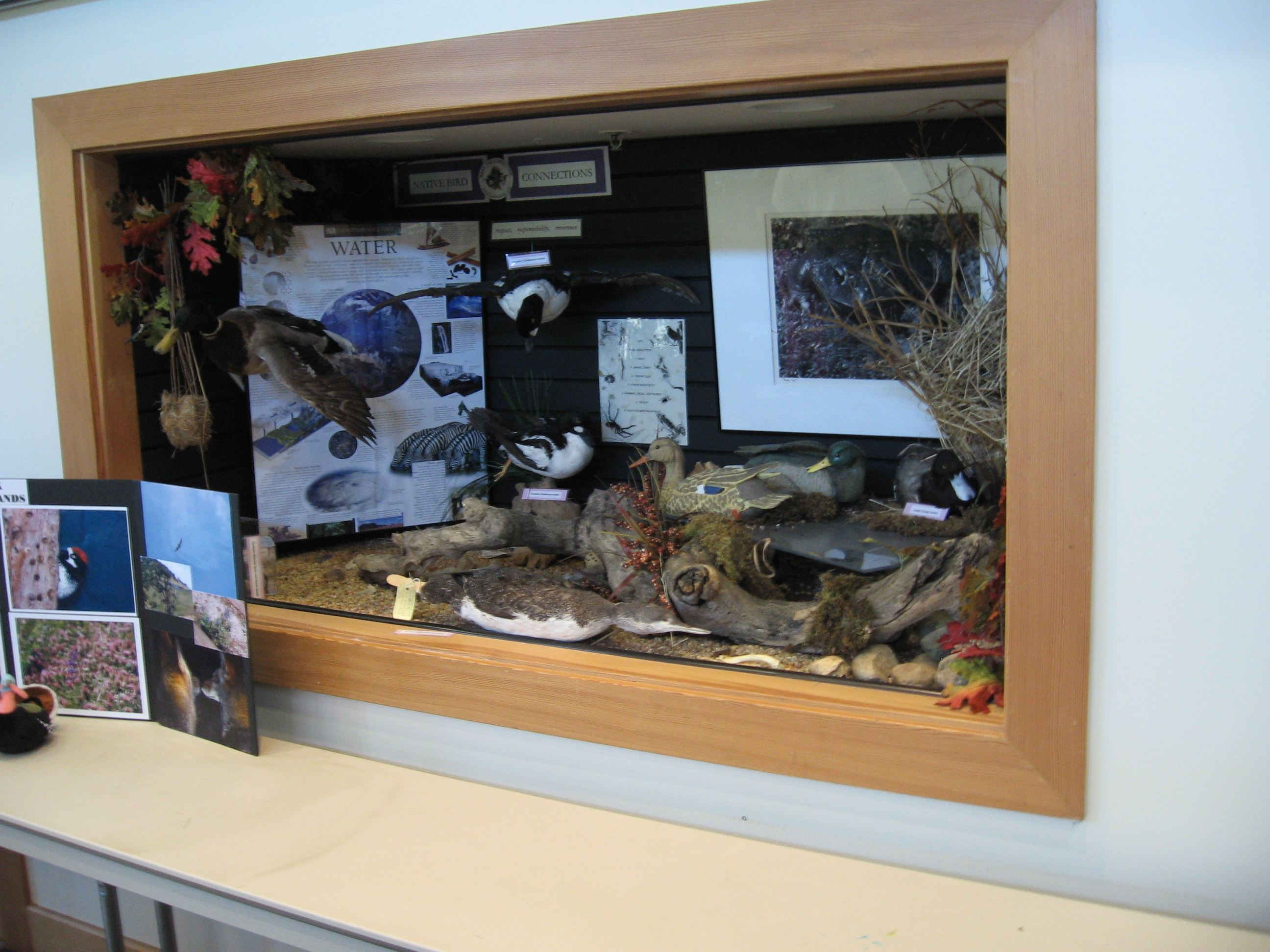 LV Interpretive Center